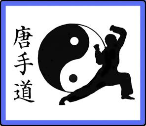 USA Martial Arts Tang So Doo Karate